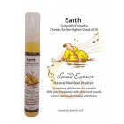 Earth Meridian Vitalizer - 15 ml bottle on a display card